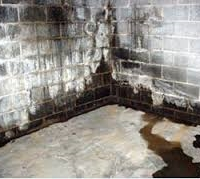 Basement Waterproofing Services in Seattle, WA